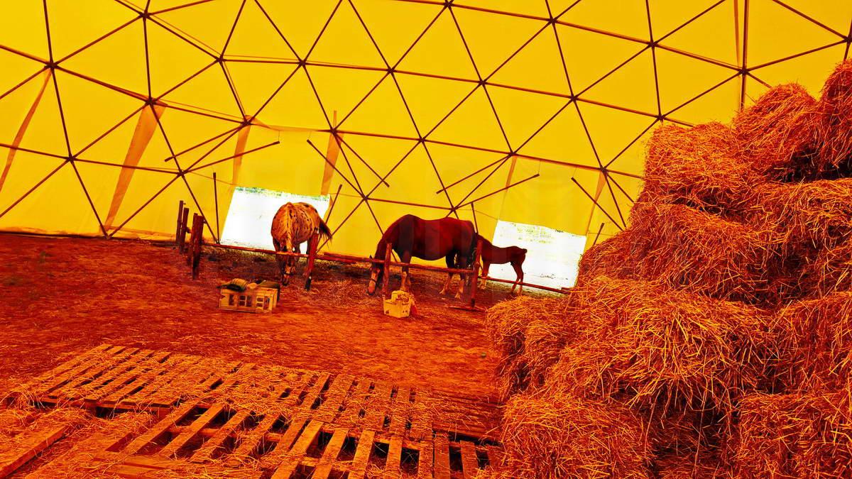 Тренажерный купол зал для верховой езды 452m2 Ø24m