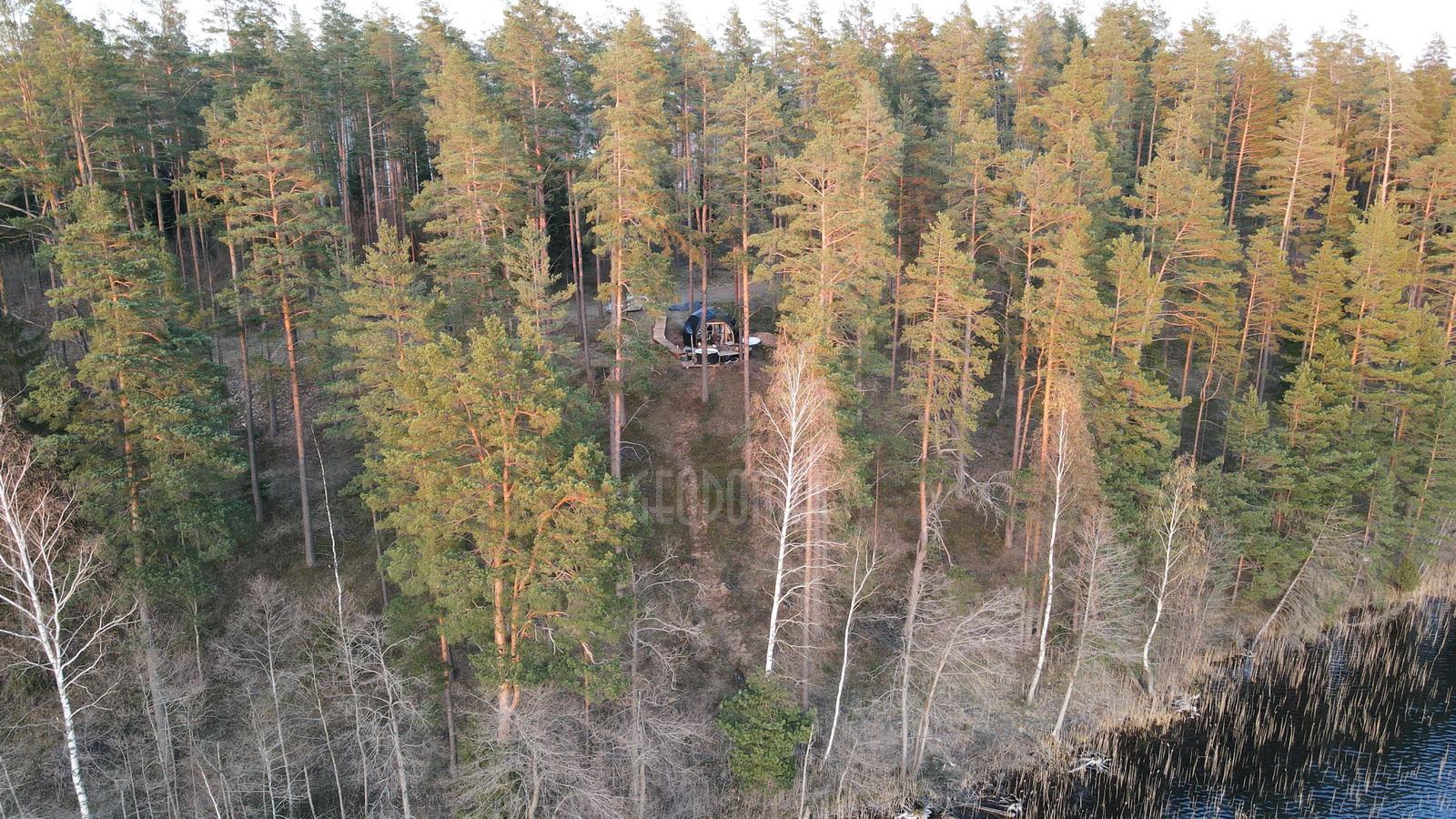 Связь с природой   Эко Жизнь в лесу   GLAMPINGLITHUANIA